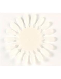 Muestrario vacío para 18 colores de esmaltes Asuer Group